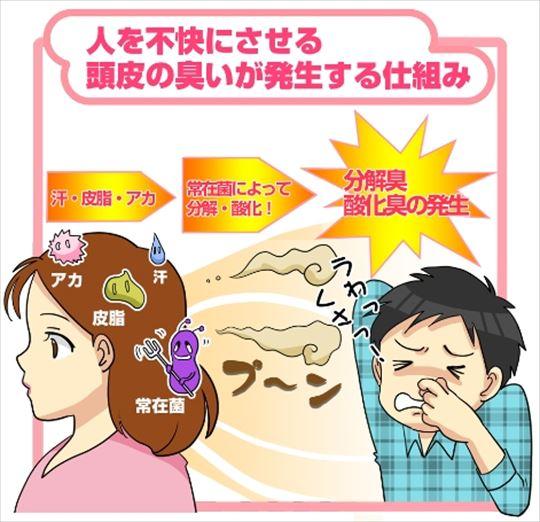 頭皮の臭いが発生する仕組み